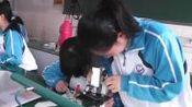 [配课件教案]5.高中生物必修一《第1节 物质跨膜运输的实例》山东省一等奖