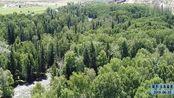 旅游攻略!新疆北部阿尔泰山区里有一个地方叫可可托海,不可错过