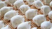 包好的饺子总是粘在一起,这样存放,放多久都不会粘在一起