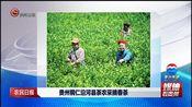 [贵州新闻联播]农民日报 贵州铜仁沿河县茶农采摘春茶