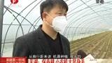 芜湖:保春耕,小农机显身手