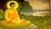 1444人品,是一个人最好的学历。佛教教育短片 欢迎转发 功德无量(深信因果 常念弥陀 消灾解难 往生极乐)阿弥陀佛