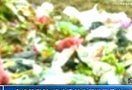 宁波警察翻5吨垃圾替俄罗斯男子找回护照[高清版]www.987k.com