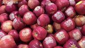 #探厦门#见过这种苹果吗?怎么怎么弄的吗?#美食##我要上热
