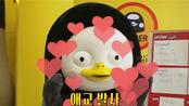 giantpengTV EP.44 pengsoo终于见到心心念念的金明中啦