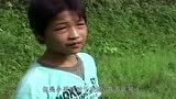 """12岁的放牛娃,被村民封为""""鸟神"""",因为能与小鸟""""对话""""?"""