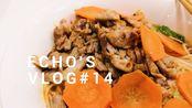 【作业很多的Echo】日本留学vlog#14 做简易版炸猪排|摊一个鸡蛋饼|日本本土酸奶味道怎样|实验室日常|做几天的便当