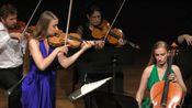 勃拉姆斯 - 大提琴 小提琴-弦乐六重奏双协奏曲 第一乐章 Brahms Double Concerto sextet,1st mov/Cello Violin