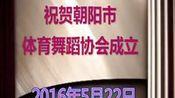 124--祝贺朝阳市体育舞蹈协会成立舞蹈展演(2016年5月22日)制作于2016年6月2日—在线播放—优酷网,视频高清在线观看