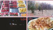 【Vlog】小县城的平凡生活◆去了很多书店◆初三女生们的唠嗑◆精分字幕◆逛超市