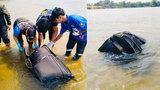 中国夫妻去泰国旅游竟被同胞杀害 被装入行李箱沉入河中溺死