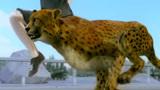 百米9.58秒是人类极限,在动物界算什么水平?看完目瞪口呆!