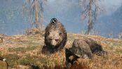 动物扑杀曲--狼、棕熊、穴熊的技巧与力量《孤岛惊魂原始杀戮》