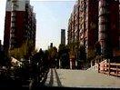 [526电影网www.526dy.com]浙江理工大学09广告2主题短片(纪念日节日)- 两个她