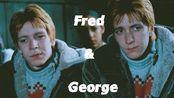 【哈利波特/双子/韦斯莱/全糖去冰】Fred and George