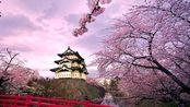 阿神冒险王系列 第三集 日本大阪神社