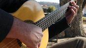 卡罗拉舞曲-安东尼奥·劳罗-古典吉他-Tony Harmon - Carora