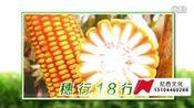 吉林省尼西文化—长春宣传片制作—平安134—在线播放—优酷网,视频高清在线观看