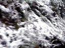视频: 13年元旦途径--安徽黄山---随拍2