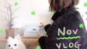 【YUZU】韩国气质女生11月的日常生活记录>>>短暂的清迈之旅/快递开箱/皮肤护理/装饰圣诞树/开车
