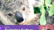 【EFTV 英孚英语直播间】足不出户游世界之探索悉尼