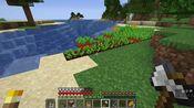 大坑龟 我的世界 1.14.4 极限生存 pe2 海洋探险(附赠钓鱼机教程)