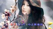 江蕙演唱《港边惜别》,陈达儒作词,吴成家作曲,江蕙金曲典藏