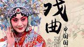 【京剧】名段欣赏演唱会联谊晚会