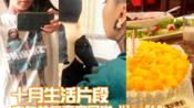 【凡ze】十月生活片段/中年单身的真实生活/吸猫/画画/手工/庆生/vlog#10
