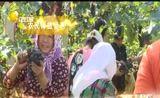 [辽宁新闻]今晚9点45分北方频道《直通市县区》周末版 走进锦州的农村 分享乡亲们丰收的喜悦