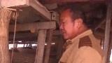 90头猪一夜间离奇死亡,潍坊养殖大叔想哭,剖开猪肚心都凉了!