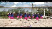 春英广场舞:歌名今夜舞起来_PMCcn.com_7—在线播放—优酷网,视频高清在线观看