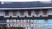 """男子同时和3个女人领""""结婚证"""",还把3个家安置在1公里内"""