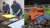 美国德州一监狱囚犯被要求制作口罩:700余人日产量约100个