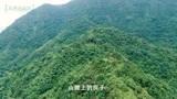 广西贺州:无人机在山上发现一间房子,靠近后却发现这里不一般