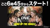 ONE Championship シンガポール大会 (2020-02-28 17:30放送)