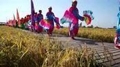 吉林第二界农民丰收节载歌载舞 中国稻米之乡舒兰又见稻米飘香