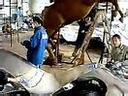湖北省武汉专业雕塑厂 首选韵城公司13971418979www.whyuncheng.cn