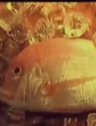 完美的红鲤鱼料理