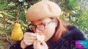 渝行记4:重庆长寿沙田柚与广西容县沙田柚,味道谁更好?