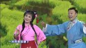 黄梅戏《打猪草》选段—田岷 张辉