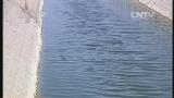 [交易时间]整点看财经 山东东营:引黄河水 开发特色农业