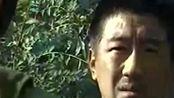 末路:官兵查询白宝山的户口,还让他证明自己的身份