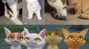 lwx和他的4只猫猫