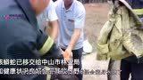 """广东养殖场水塘现5米""""大泥鳅"""",出动挖掘机捕获,意外却发生了"""