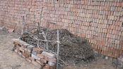 在院里制作有机堆肥