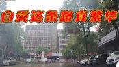 四川自贡市,这条路看着真繁华,有眼熟的吗?
