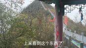 湖北省襄阳市保康县黄龙观风景区