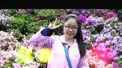 湖北省实验中学(2013-2016)七班同学青春纪念 3版
