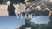 第二次pr剪辑试手vlog|大学生的日常.